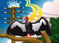 Illustration of condor on branch near power lines